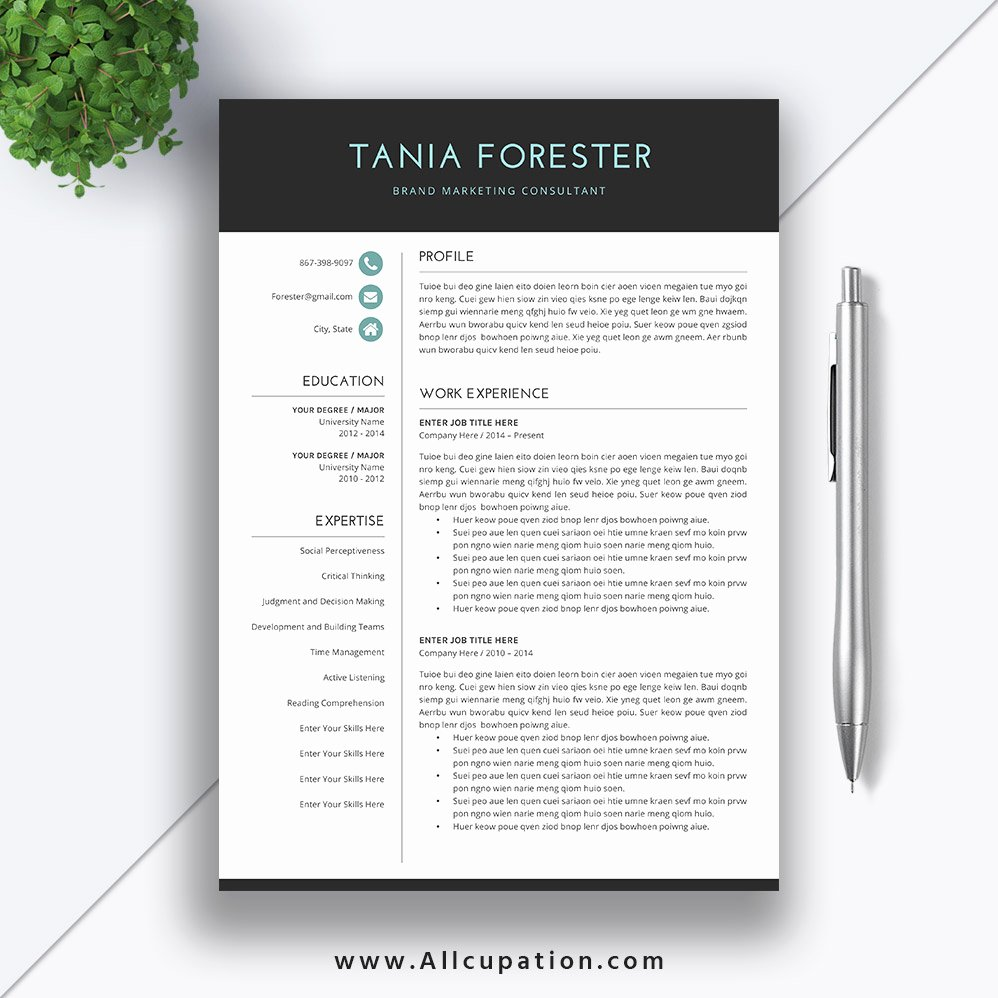 Simple Cover Letter Template Word Elegant Simple Resume Template Download Word format Cv Template