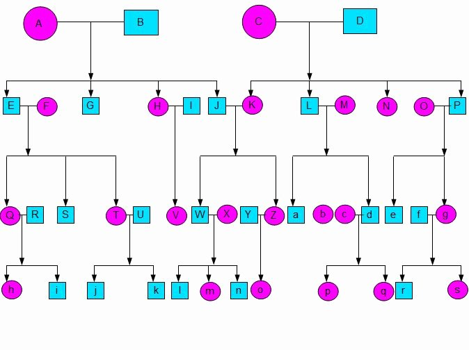 Simple Family Tree Template Fresh Simple Family Tree Template Sample