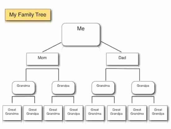 Simple Family Tree Template Inspirational Family Tree Templates Find Word Templates