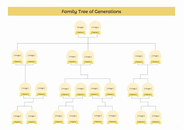 Simple Family Tree Template New Simple Family Tree Template 27 Free Word Excel Pdf
