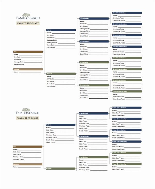 Simple Family Tree Template Unique Sample Family Tree Chart Template 17 Documents In Pdf