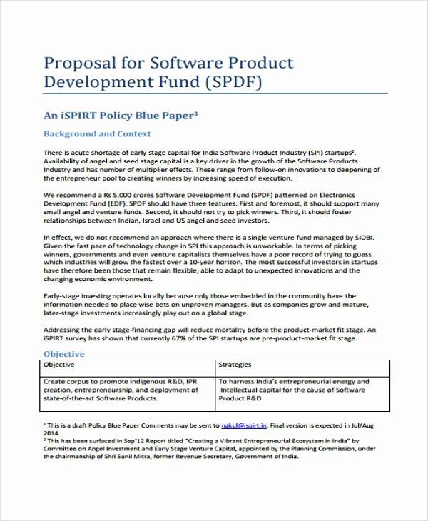 Software Development Proposal Template Fresh 18 Product Proposal Templates Free Word Pdf Documents