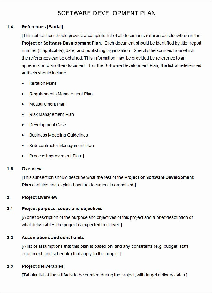 Software Development Proposal Template Unique software Plan Template 8 Free Word Pdf Excel