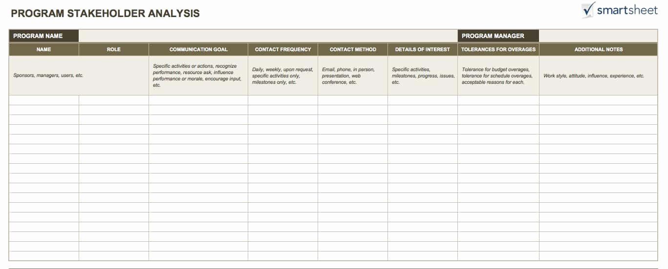 Stakeholder Analysis Template Excel Beautiful 14 Free Program Management Templates