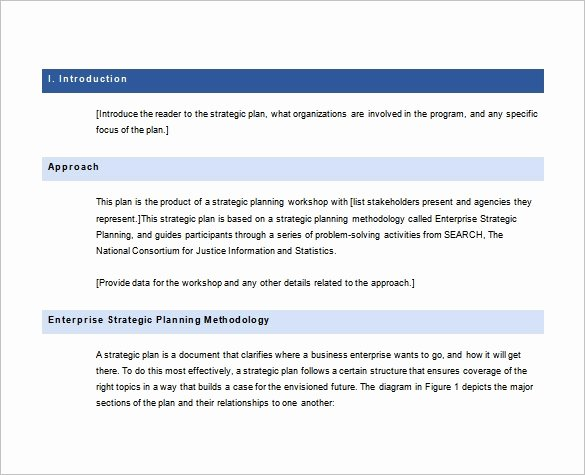 Strategic Plan Template Free Elegant 36 Strategic Plan Templates Pdf Docs