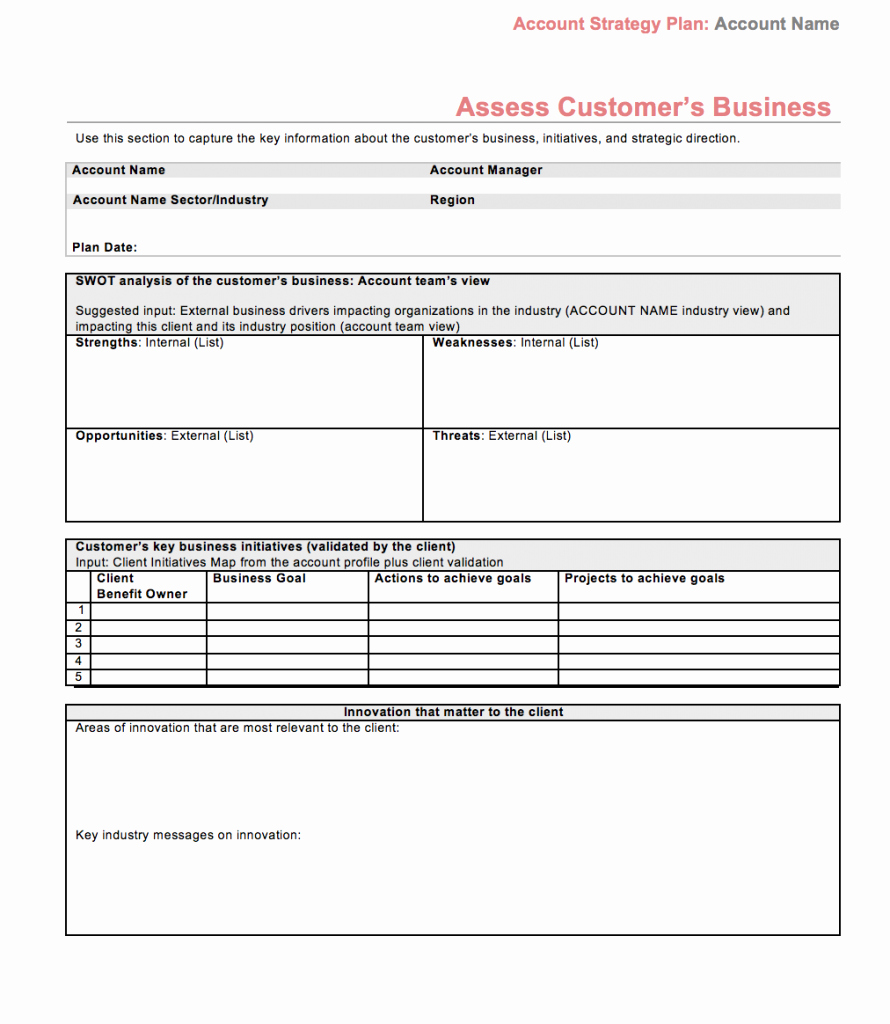 Strategic Plan Template Free Luxury Strategic Account Plan Template assess Customers