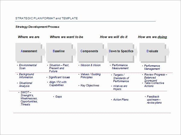 Strategic Planning Template Free Beautiful Strategic Plan Template