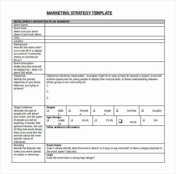 Strategic Planning Template Free Beautiful Strategic Plan Template Word