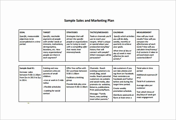 Strategic Sales Planning Template Luxury 27 Sales Plan Template Pdf Docs Word