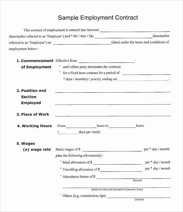 Temporary Employment Contract Template Fresh 23 Sample Employment Contract Templates Docs Word
