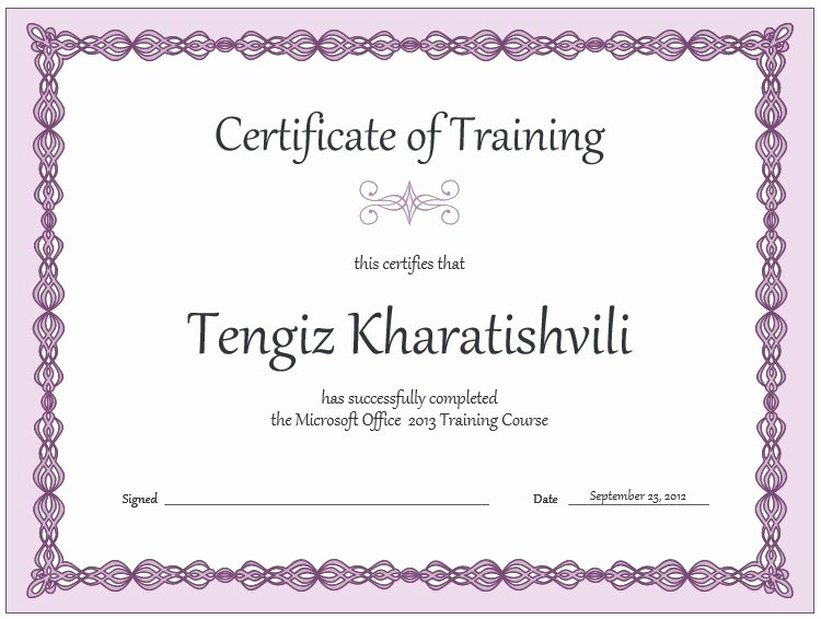 Training Certificate Template Free New 11 Free Sample Training Certificate Templates Printable