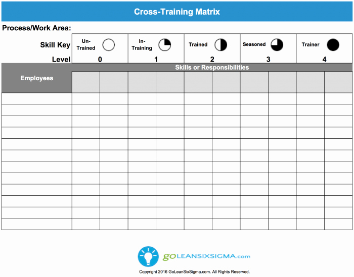 Training Plan Template Excel Luxury Cross Training Matrix Template & Example