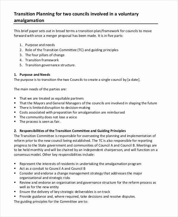 Transition Management Plan Template Best Of Program Management Plan Sample 8 Examples In Word Pdf