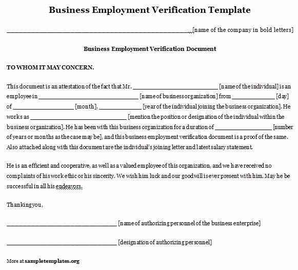 business employment verification template