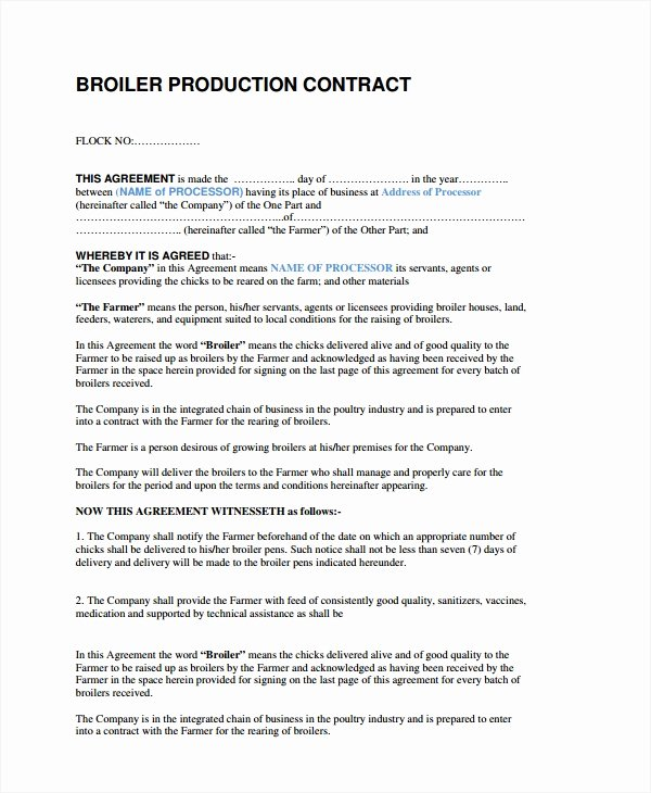Video Production Contract Template Best Of 9 Production Pany Contract Templates Docs Word