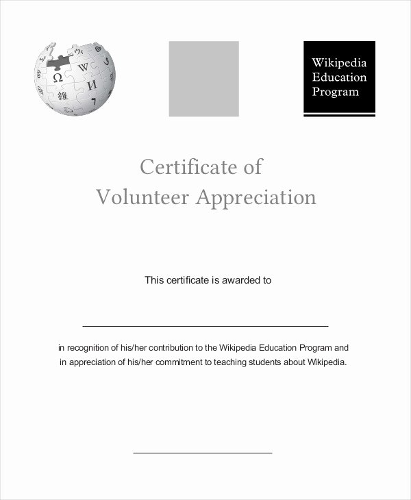 Volunteer Appreciation Certificate Template Lovely Certificate Of Appreciation 15 Free Pdf Ppt Documents