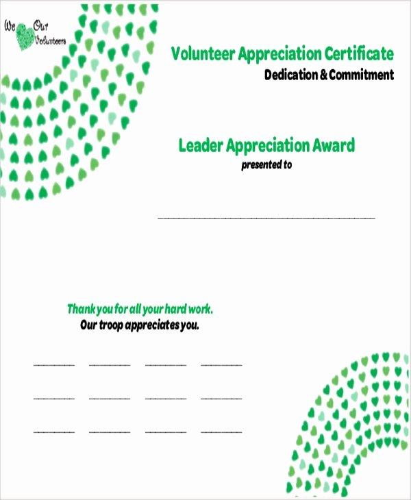 Volunteer Appreciation Certificate Templates Awesome Sample Certificate Of Appreciation 19 Examples In Word