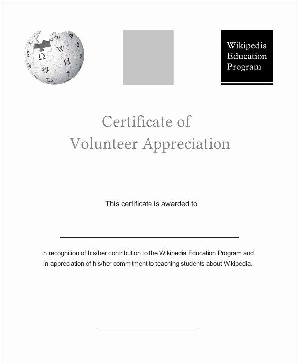 Volunteer Appreciation Certificate Templates Beautiful Certificate Of Appreciation 15 Free Pdf Ppt Documents