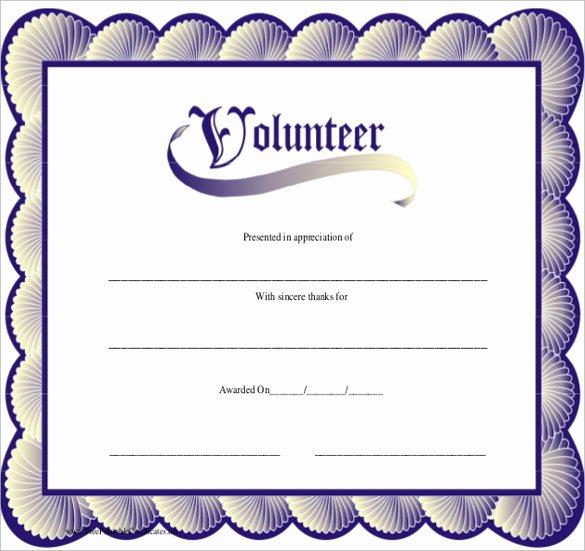 Volunteer Appreciation Certificate Templates Elegant Sample Volunteer Certificate Template 13 Documents In