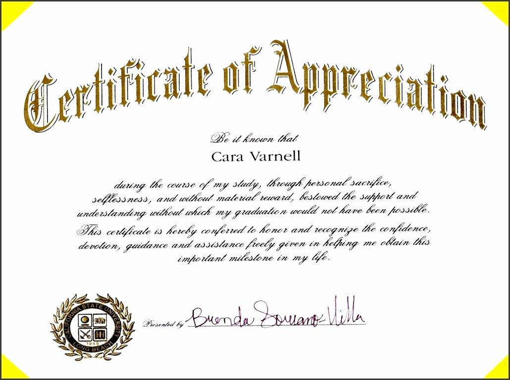 Volunteer Appreciation Certificate Templates Inspirational 9 Certificate Appreciation Line Sampletemplatess