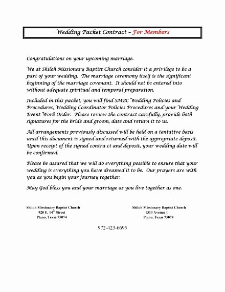 Wedding Planning Contract Templates Lovely 6 Wedding Planner Contract Templates