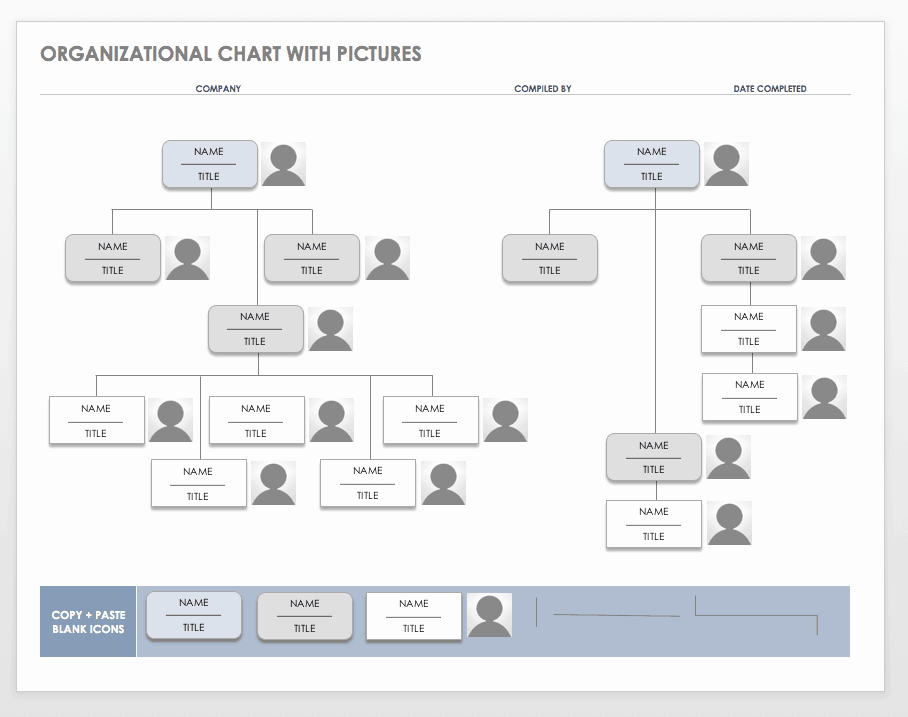 Word org Chart Template Lovely Free organization Chart Templates for Word