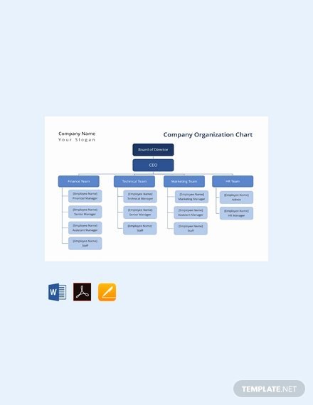 Word org Chart Templates Luxury Free Pany organization Chart Template Download 330