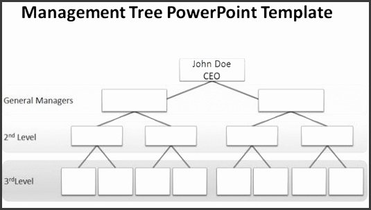 Word org Chart Templates Unique 5 organisational Chart Template Word Sampletemplatess