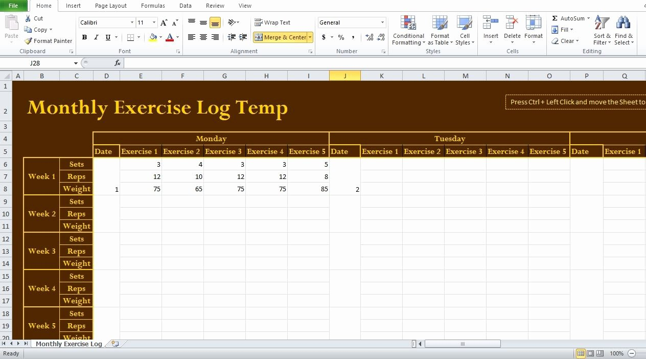 Workout Log Template Excel Beautiful Professional Exercise Log Template Excel