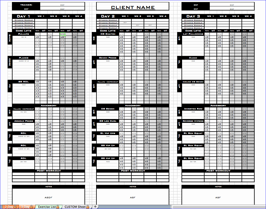 Workout Log Template Excel Beautiful Workout Template Excel