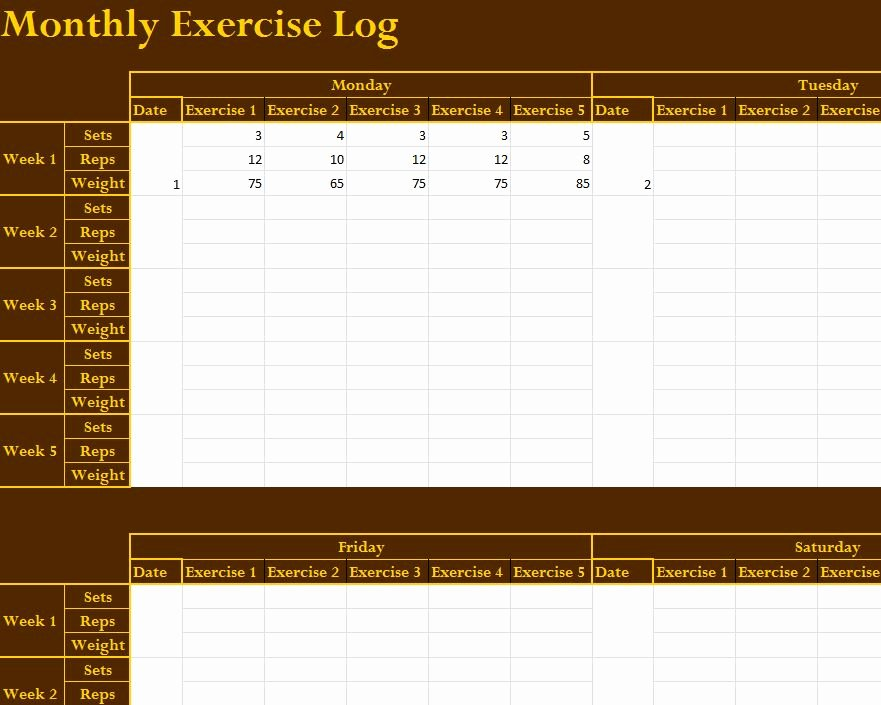 Workout Log Template Excel Best Of Monthly Exercise Log My Excel Templates
