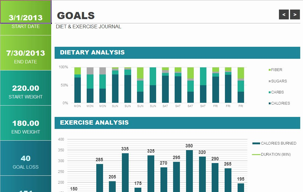Workout Log Template Excel New 24 Of Exercise Journal Template Excel