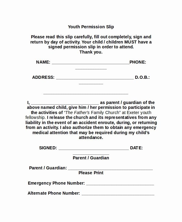 Youth Permission Slip Template Best Of 11 Slip Templates Free Sample Example format